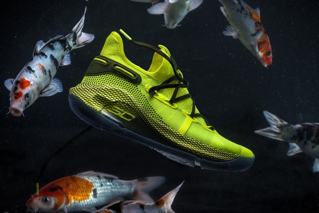 Curry 6 Coy Fish5280